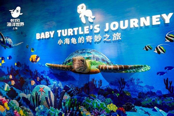 """上海长风海洋世界""""化身小海龟 探索大海洋""""欢乐之旅图片"""