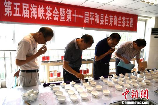平和白芽奇兰茶王赛活动现场。 王东明 摄