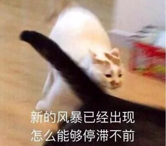 新莆京娱乐官网 4
