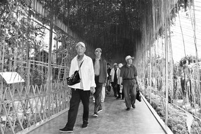 福利枣庄福利院老人景区采风欢乐多 工作人员:满足老人的精神文