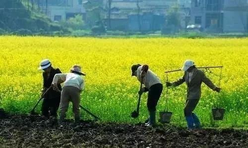 【深度】中国最大的危机并不在房地产,而是走向死亡农村