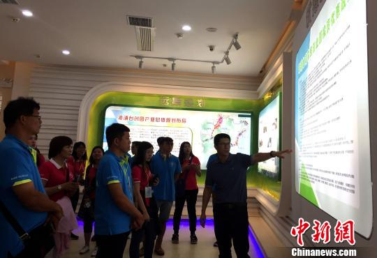 台湾青年在漳浦台湾农民创业园了解优惠政策。 何凌霄 摄