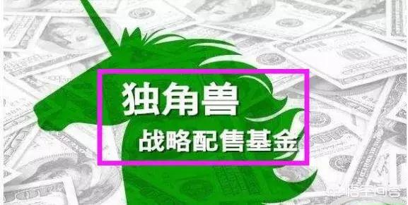【解惑】CDR独角兽基金开始发行,周期三年,散