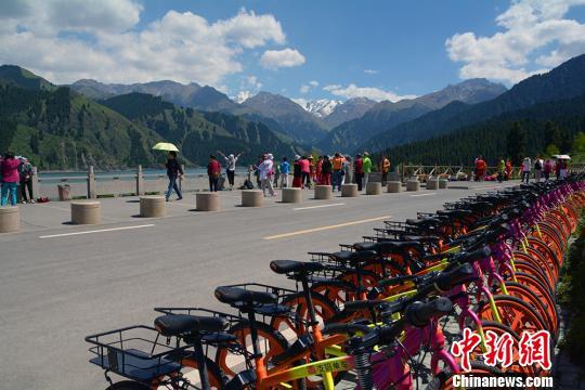 天池湖畔共享单车供游客使用。 罗红梅 摄