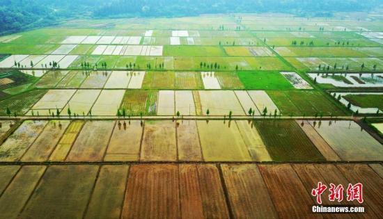 农业农村部:全国13万个村组完成农村集体产权制度改革