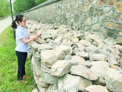 圆明园流散的石头 回家 了