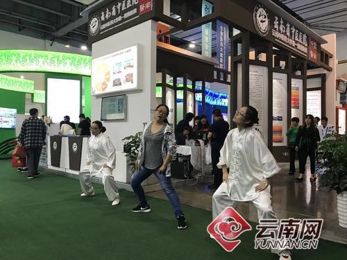 """【南博会】展示最云南养生生活方式 """"中医药"""