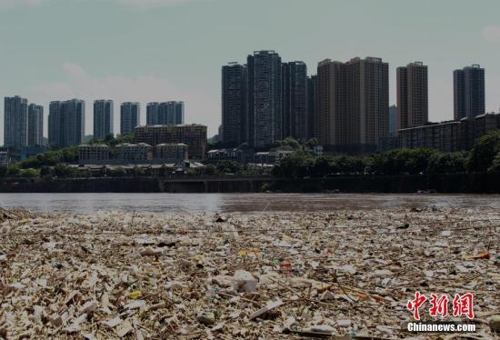 资料图:长江重庆段江面上的大量垃圾。 周毅 摄