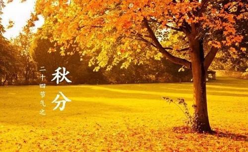 """为什么要设立""""中国农民丰收节""""?"""