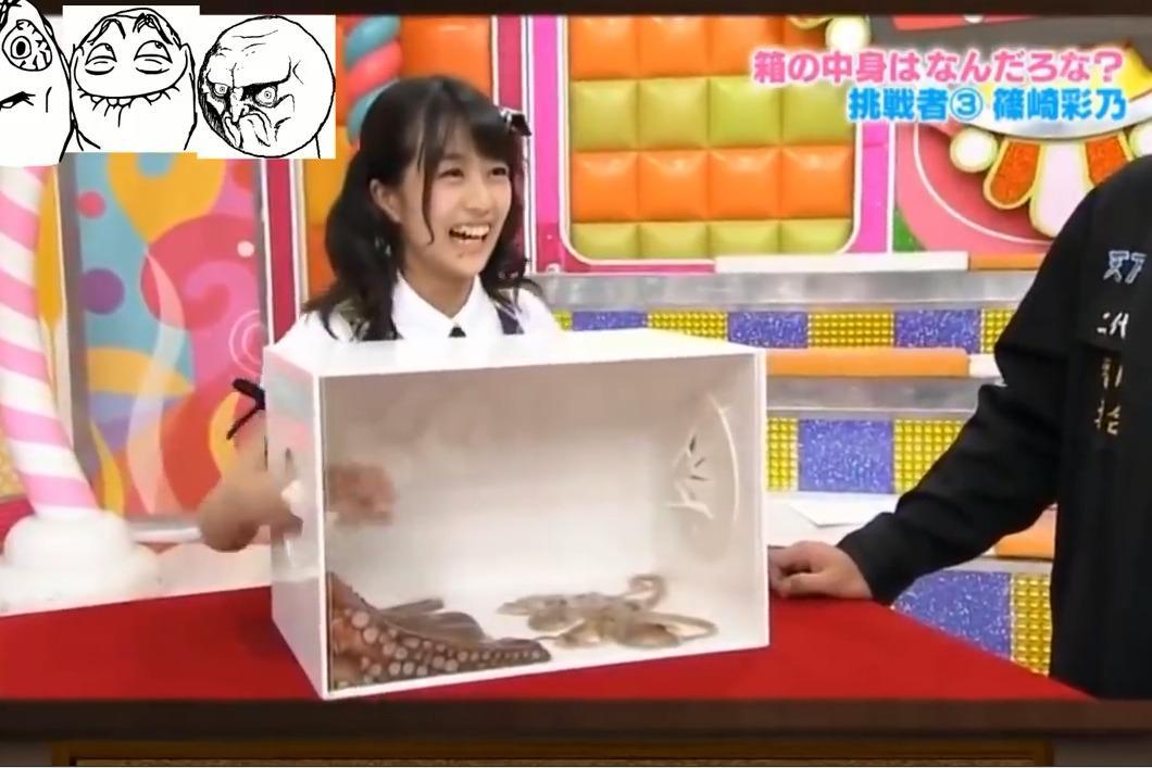 日本整人节目!日本妹子摸未知生物被吓傻!太可爱了!