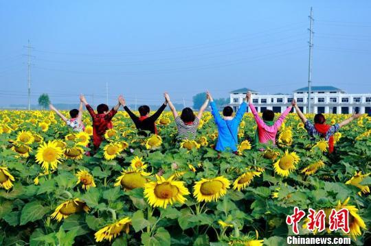 游客在花丛中摆出各种各样的Pose。 张建设 摄