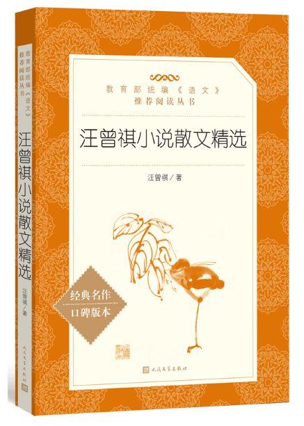 汪曾祺的小说世界宁波情趣用品店图片