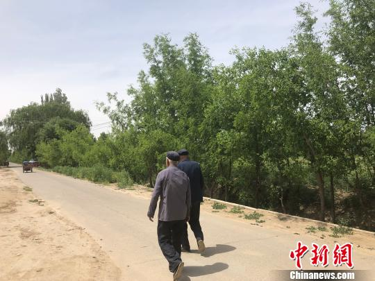 在民勤县的村庄里,成排的树木随处可见。 徐雪 摄