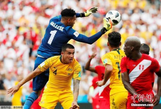 """北京时间6月26日晚,世界杯小组赛C组最后一轮同时拉开战幕。澳大利亚在索契菲施特迎战已经提前出局的秘鲁队。经过90分钟鏖战,本被认为""""无欲无求""""的秘鲁以2-0完胜对手,在拼到一场宝贵胜利、昂首告别的同时,也击碎了袋鼠军团的出线梦想。"""