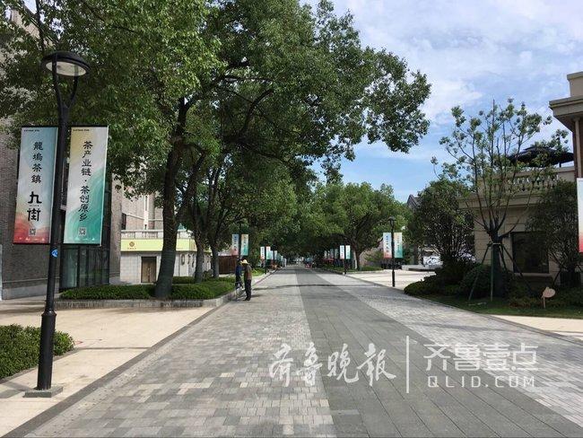 融媒浙江行龙坞茶镇这个西湖龙井最大产区如何蝶变