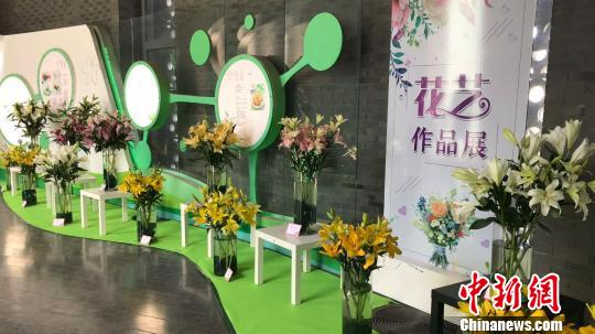第四届北京百合文化节室内展区。 于立霄 摄