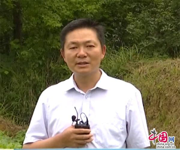 贵州独山上司镇:种植法国青刀豆 抢抓发展机遇
