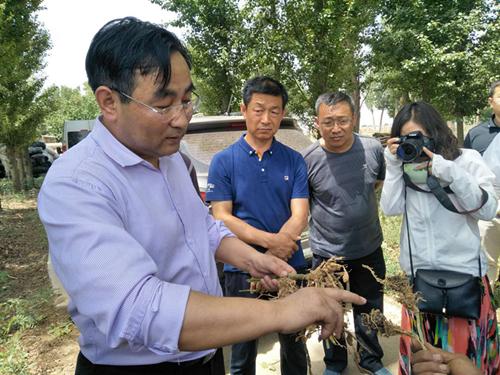 潭州农业与内蒙古准格尔旗科技局进行战略合作