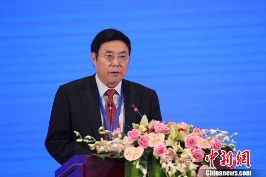 中国经济社会理事会副主席杨崇汇致辞。 张亨伟 摄