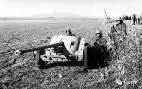 北非战场虎式图片