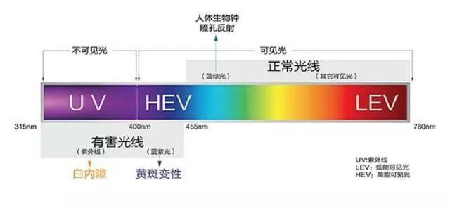 蓝色光危害这么大,为什么全球科技产品都爱用