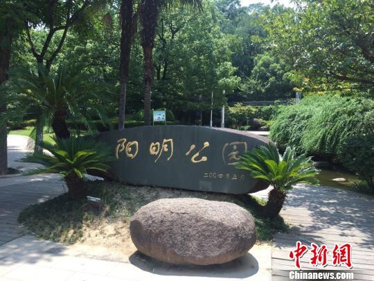 图为绍兴市阳明公园 项菁 摄