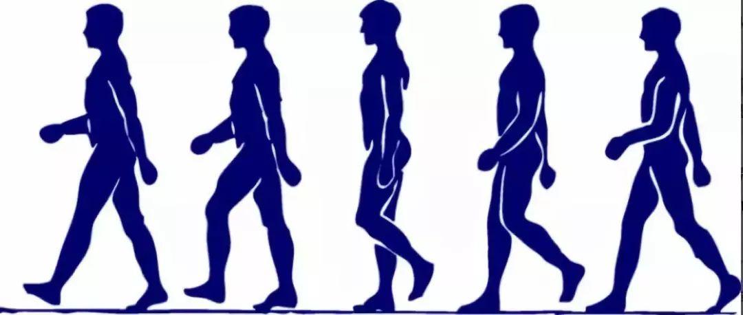 微信运动步数第一,但不一定健康!这3大准则你get到了吗