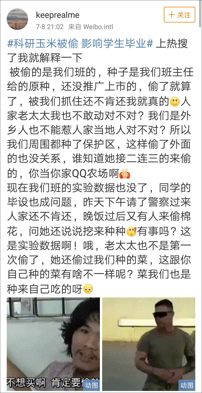 价值千万!湖南农大科研玉米被偷 影响学生毕业