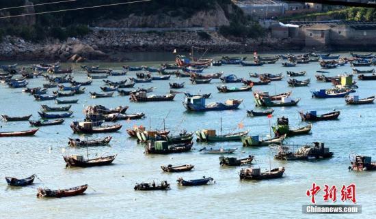 福建省连江县黄岐镇大批渔船回港避风。 王东明 摄