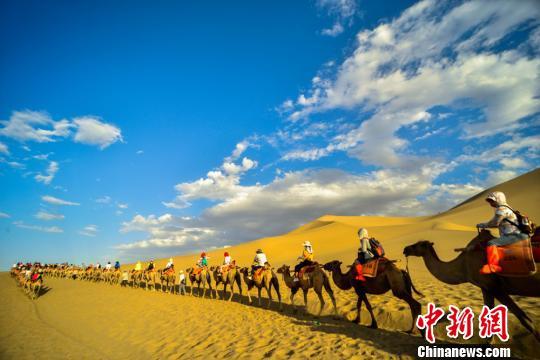 图为满载游客的驼队蜿蜒行进在大漠。 王斌银 摄