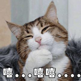 粤语俚语 粤语俚语千千万,都是真的好好玩哈哈哈哈哈哈哈哈