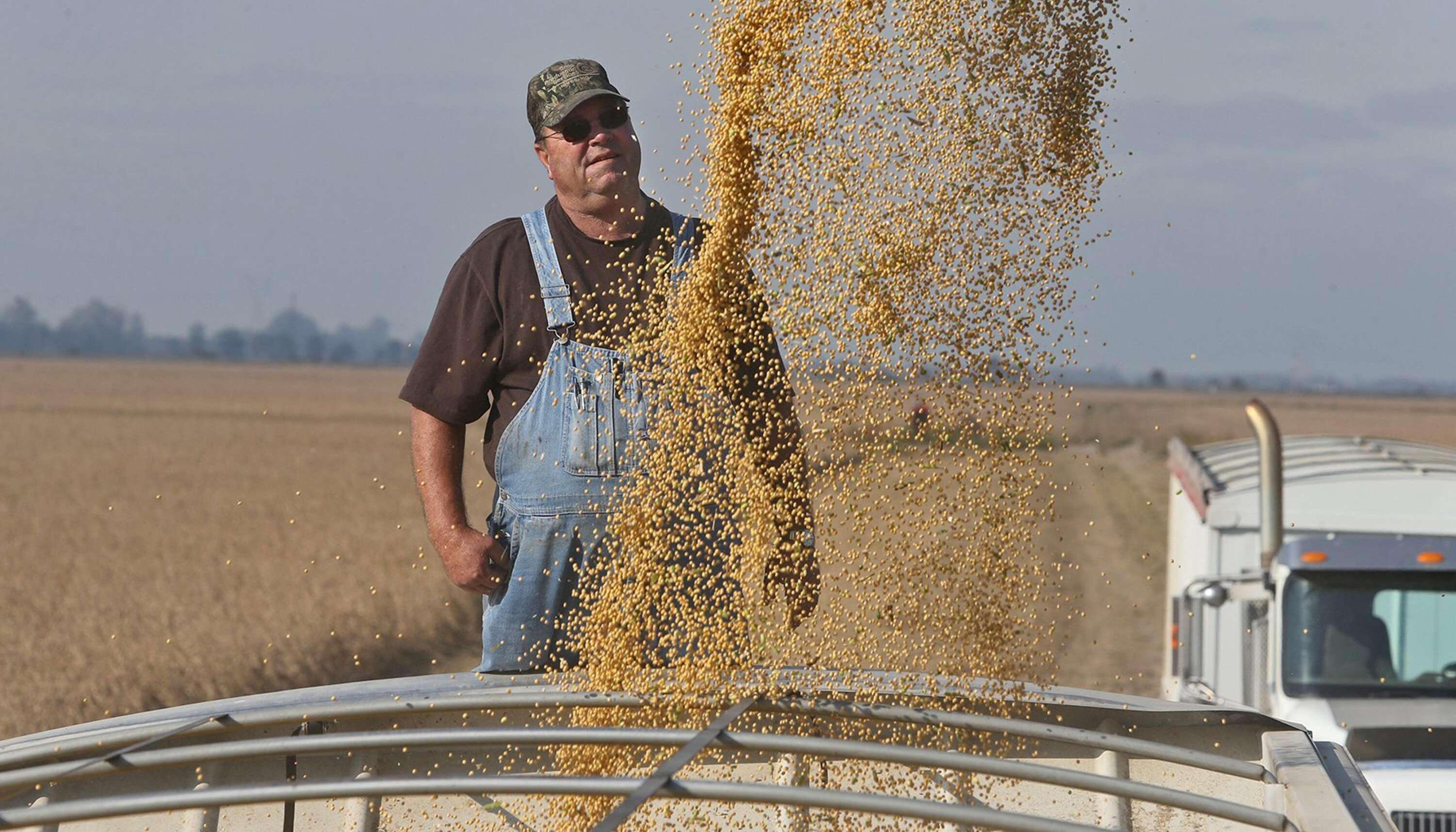 中国大豆已无力回天?美国开始加购巴西大豆,巴定差减压阀图片