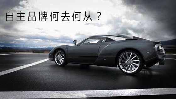 """自主品牌何去何从,新能源汽车发展的""""危""""与""""机"""""""