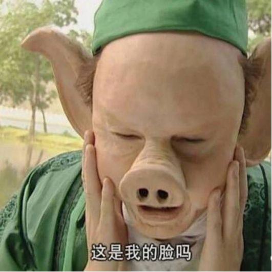 """动物系p2p上演疯狂动物城——真的""""苟""""年大""""急""""?"""