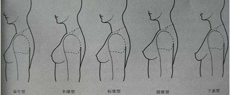 差异胸女生这4种胸型,特别第3种,直男公认最男生女生与部分图片