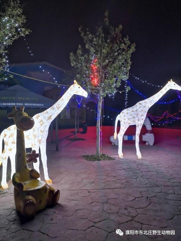 濮阳东北庄野生动物园夜场开放免费入园!快看你符合条件吗?