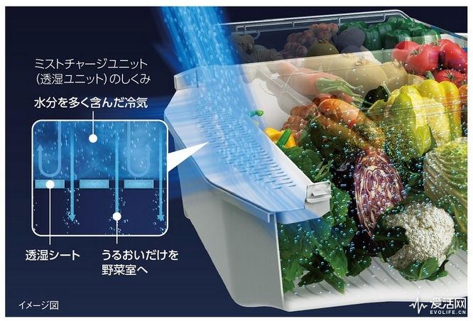 夏日蔬果更保鲜 东芝vegeta系列冰箱新品C位出道_排列五预测号码