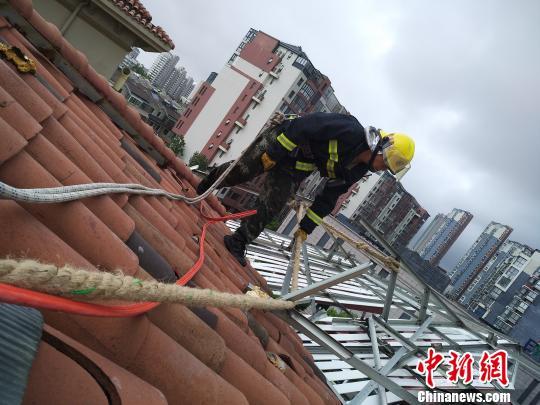 图为消防官兵正在排除高空坠物危险。 供图 申海 摄