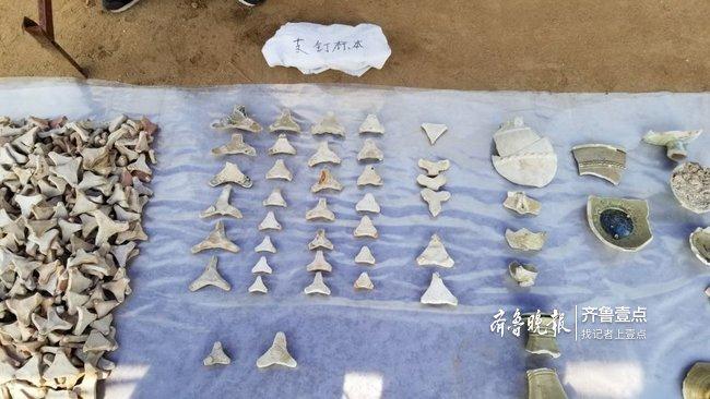 泰安发掘一古窑址,为山东近30年发现最大隋代男秋装打底图片