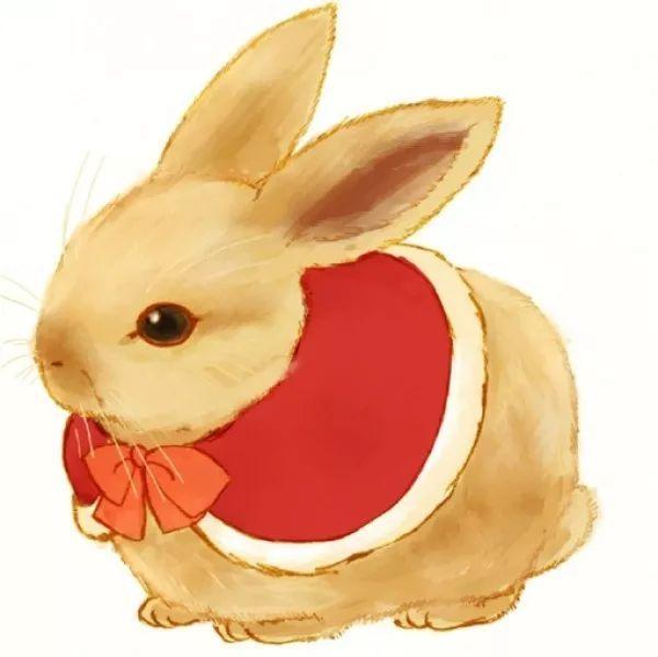 一只只可爱的兔子宝宝忍不住来围观,都想把这个胡萝卜吃掉!