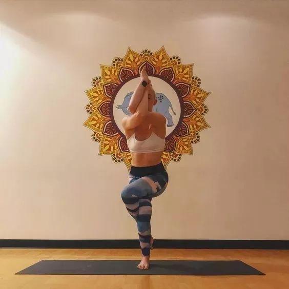 瑜伽动物体式打卡