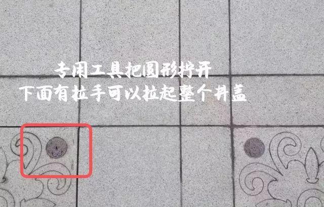 地砖花纹图案凤凰