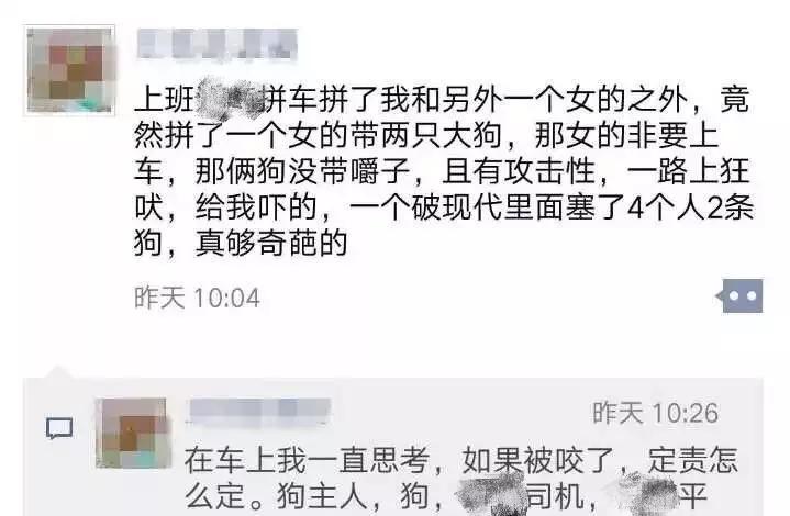 杭州女子拼车拼到一路狂吠的两条大狗,称滴滴事发三天未道歉
