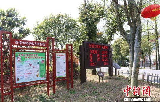 """安徽铜官区力争打造水清岸绿产业优的""""生态样板"""""""