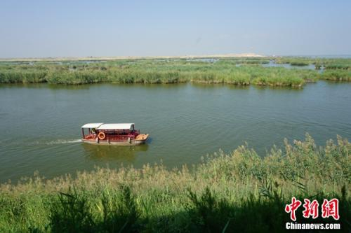 宁夏沙湖旅游景区内,游船在湖面上走驶。 姜雨薇 摄