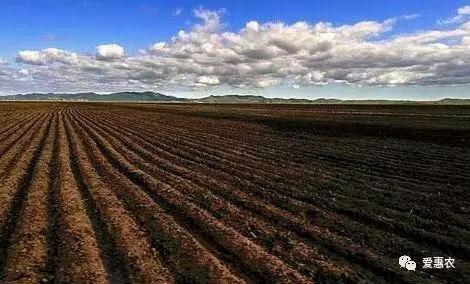 爱惠农|农业农村部给出答复,东北黑土地保护应