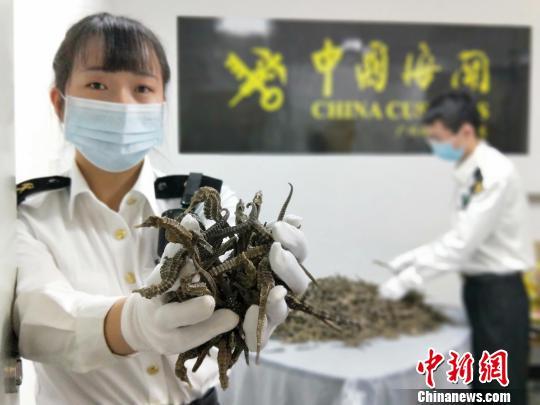 广东外贸7月明显回暖 进出口同比增长13.7%