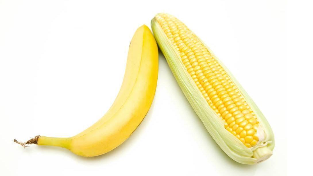 嫩玉米配香蕉,草鱼放弃草开始吃这个,原因不知道,可就是上鱼快