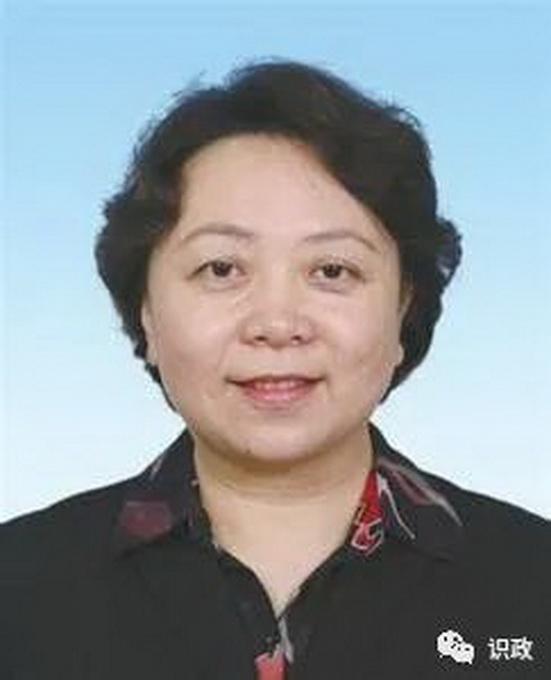 张雯任北京互联网法院院长、审判委员会委员、审判员
