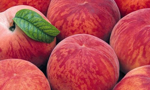 过年水果品种繁多功效用途一个不落告诉你
